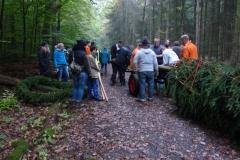 Im Wald 2015