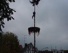 Baum 99-1.JPG