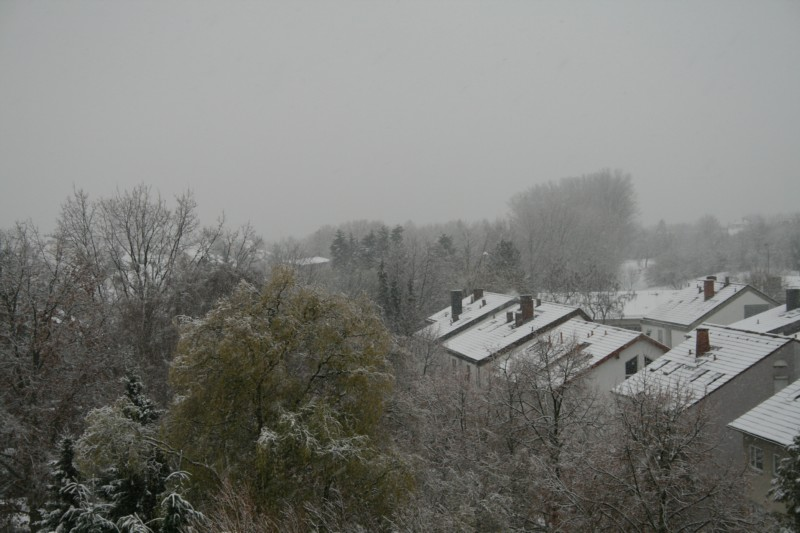 Schnee-8.jpg