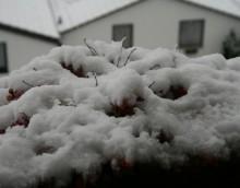 Schnee-7.jpg